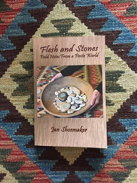 Picture of Mrs. Shoemaker's book Flesh and Stones